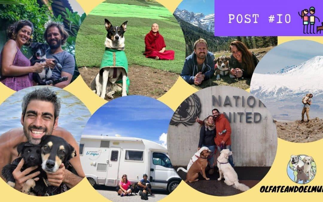 7 familias que viven viajando con su perro nos aconsejan cómo y por qué hacerlo
