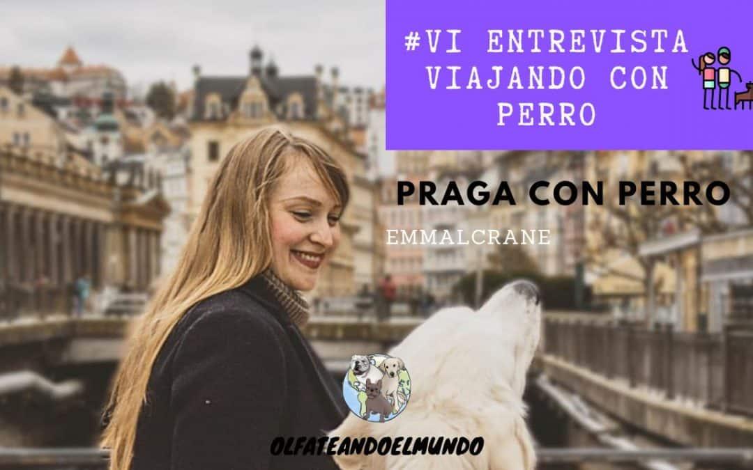 Viajar con perro a Praga